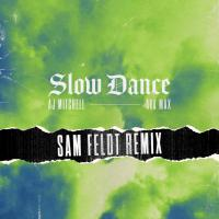 Slow Dance (Sam Feldt RMX)