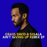 Ain't Giving Up (Remixes)