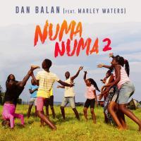 Numa Numa 2 (+ Remixes)