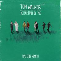 Better Half of Me (MJ Cole Remix)